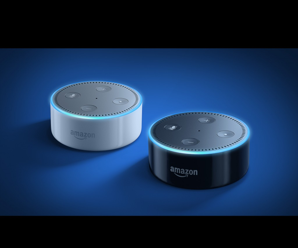 SalaryBot now available for the echo dot.